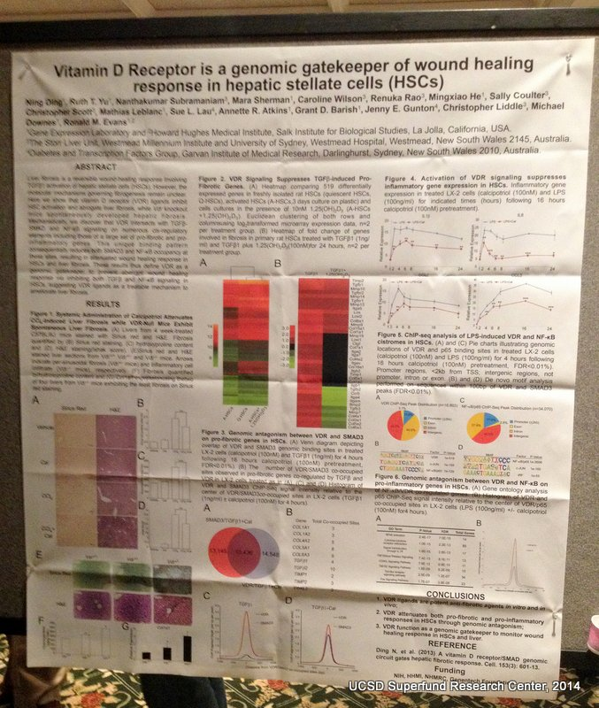 Drs. Ron Evans and Ning Ding's poster at the SRP 2014 Annual Meeting